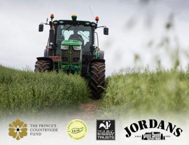 Jordans Farm Partnership deeper stripe block insert image 1 finals