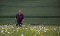Graham Birch oats flowers