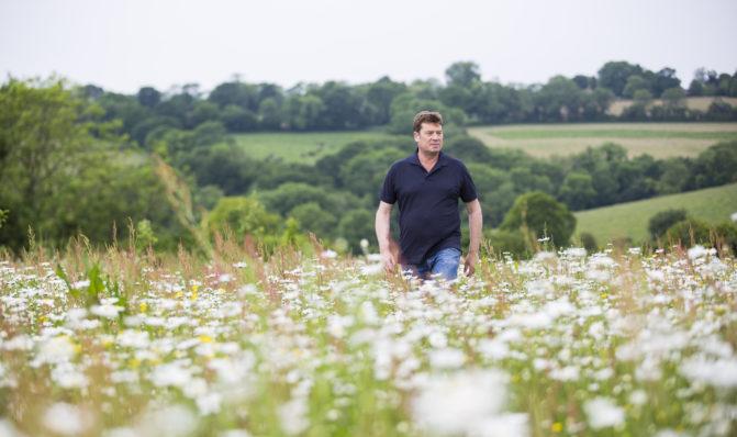Nick in wildflower meadow