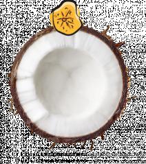 Coconut Banana Slice